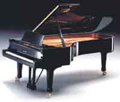 Piatino Sas - Pianoforti dal 1910