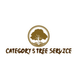 Category 5 Tree Service