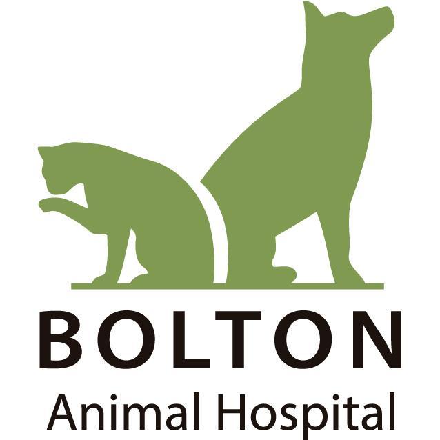 Bolton Animal Hospital - Albuquerque, NM 87106 - (505)399-2312 | ShowMeLocal.com