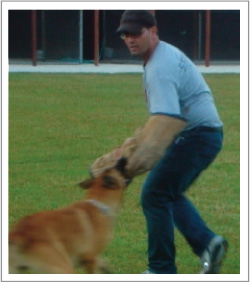 K9 Advisors Dog Training image 6