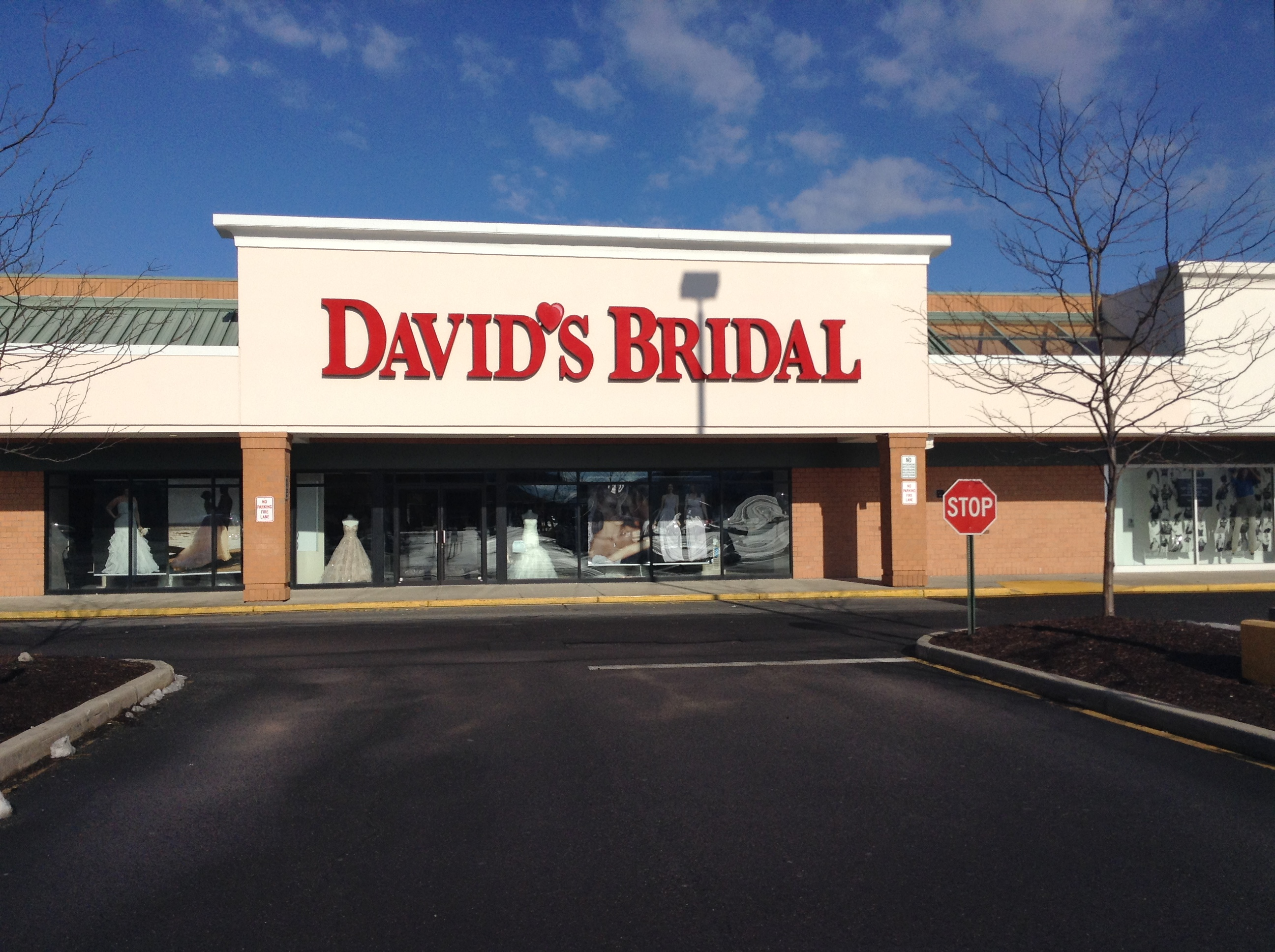 David S Bridal Danbury Connecticut Ct Localdatabase Com