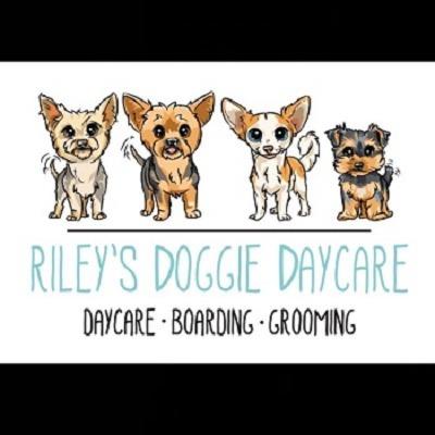 Riley's Doggie Daycare - Los Angeles, CA 90015 - (323)868-9990 | ShowMeLocal.com