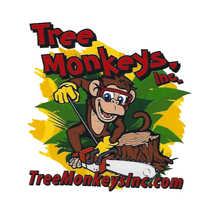 Tree Monkeys, Inc. - Oviedo, FL 32765 - (407)542-4553 | ShowMeLocal.com