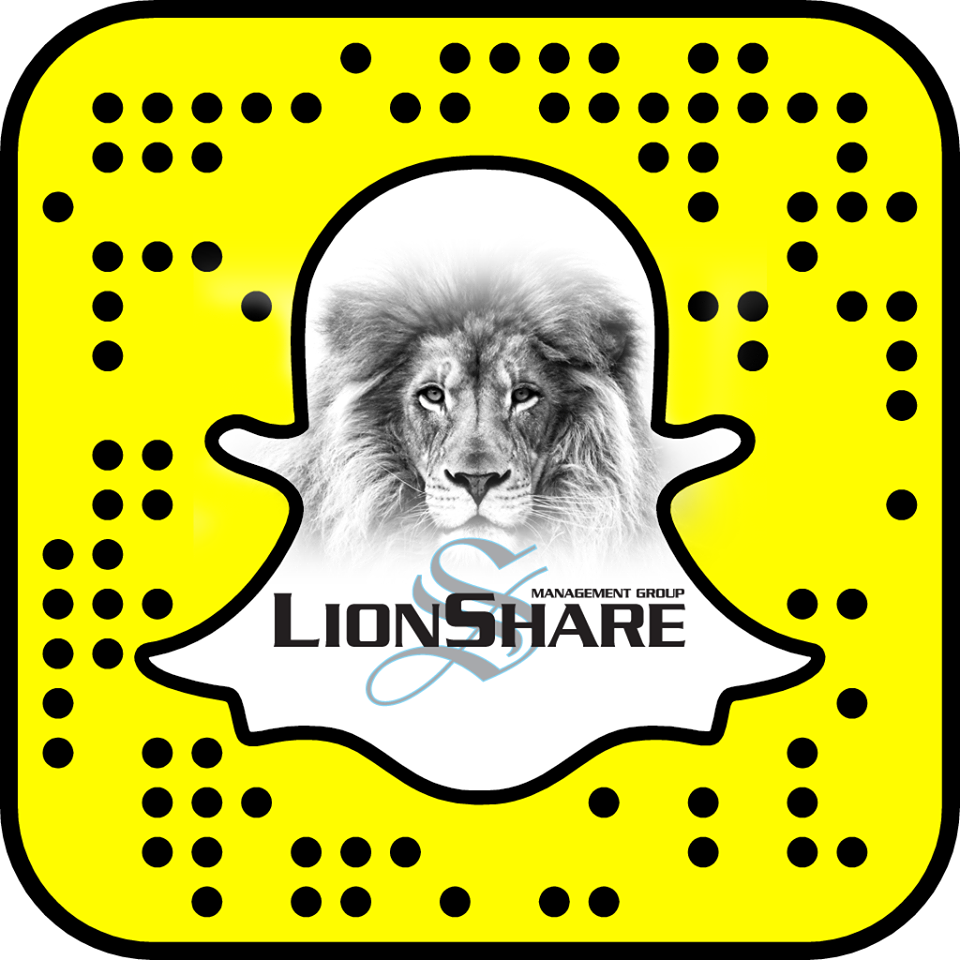 Lion's Share Management Group