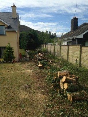 Scanlon Tree Services 5