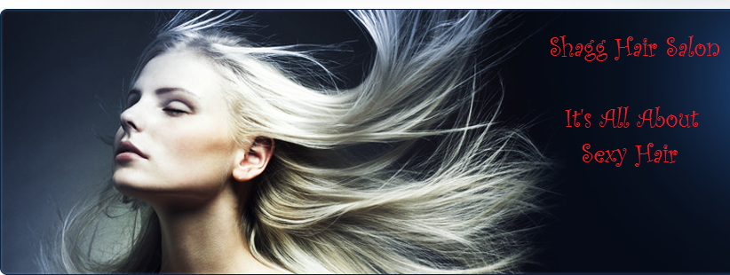 Shagg Hair Salon - Tucson, AZ 85711 - (520)795-6096 | ShowMeLocal.com