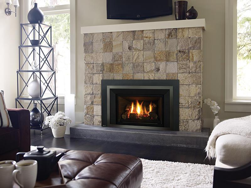 Fireplace Gallery in Edmonton: Regency Liberty Series Medium Gas Fireplace Insert - LRI4