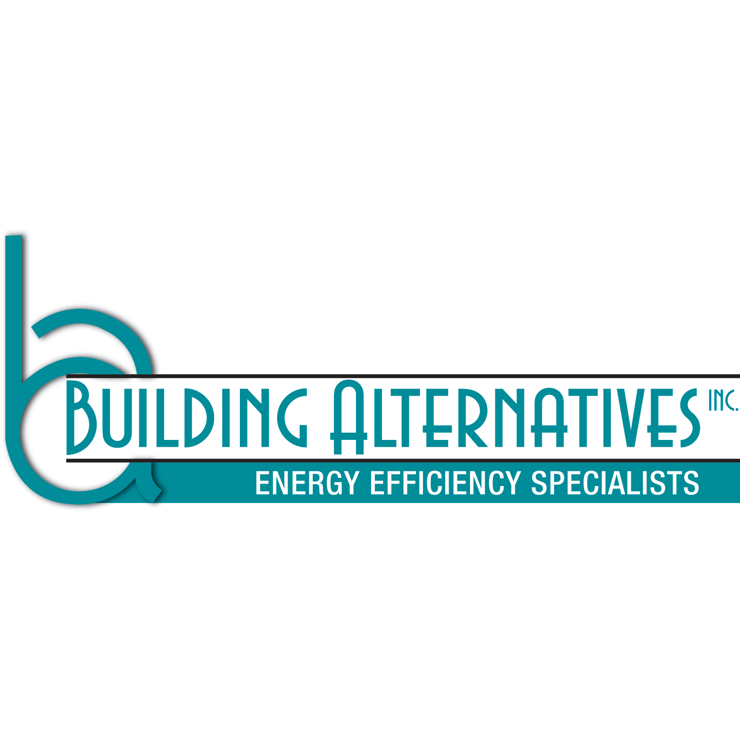Building Alternatives, Inc.