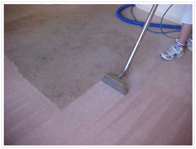 image of the Trust Carpet & Tile Cleaning