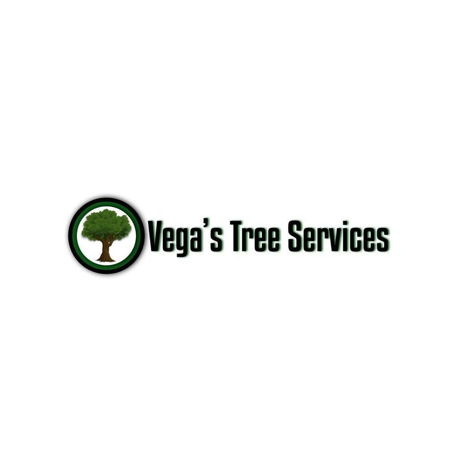 Vega's Tree Services - Oakland, CA - Tree Services