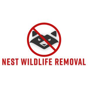 Nest Wildlife Removal Washington DC - Washington, DC 20032 - (202)930-9572   ShowMeLocal.com