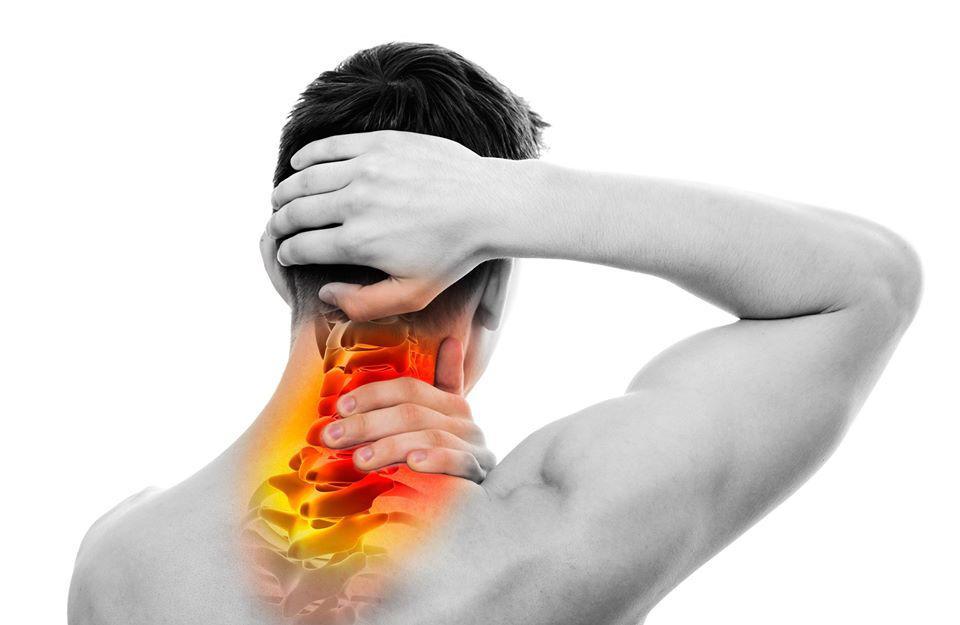 Elite Spine & Sports Care of Fort Lee