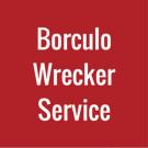 Borculo Wrecker Service - Zeeland, MI - Auto Towing & Wrecking