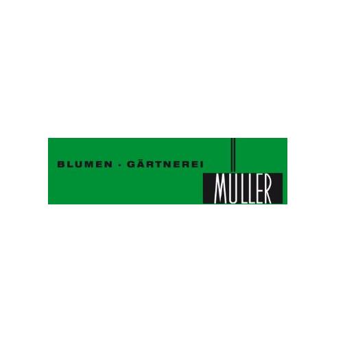Bild zu Blumen-Gärtnerei Müller in Stuttgart