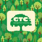 Georgia Tree Company
