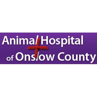Animal Hospital of Onslow County - Jacksonville, NC - Veterinarians