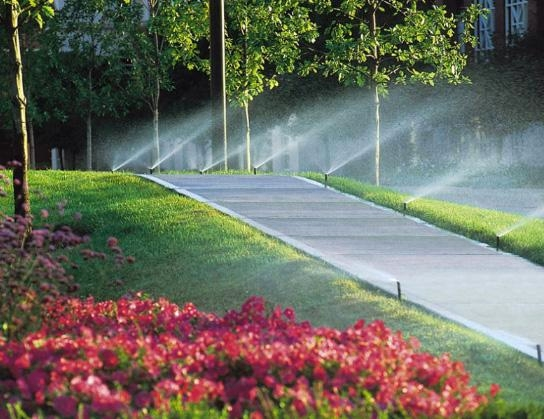 Professional Irrigation Systems image 10