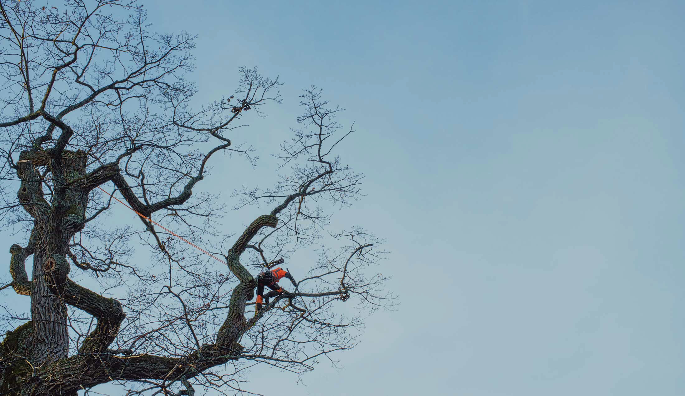 Upplands Träd och Markservice, AB