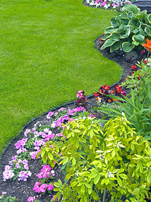 Earth and Turf Partners, LLC - Zionsville, IN 46077 - (317)733-6499   ShowMeLocal.com