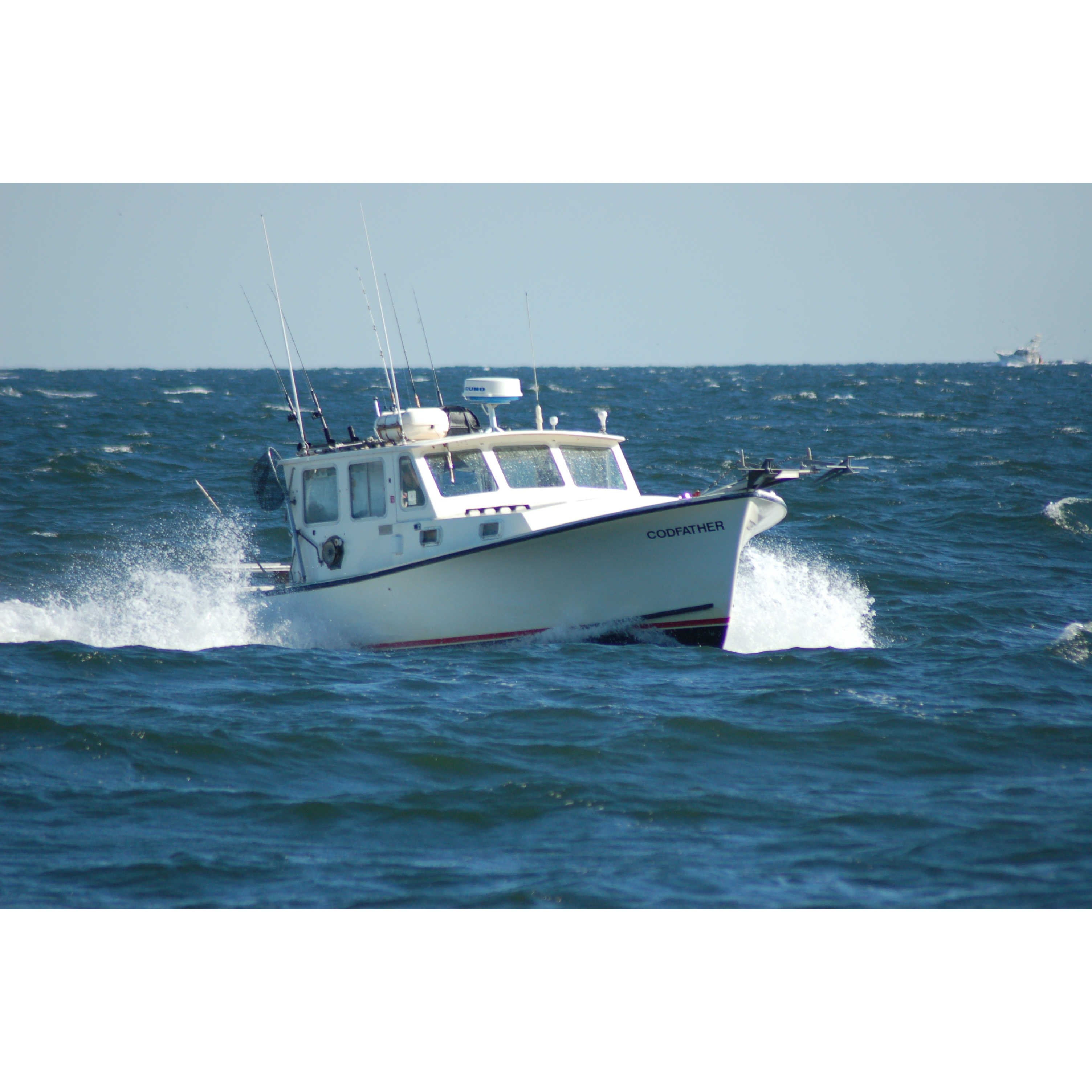 Codfather fishing charters coupons near me in freeport for Fishing area near me