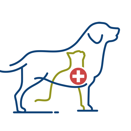 Vitality Veterinary Services of Waterford