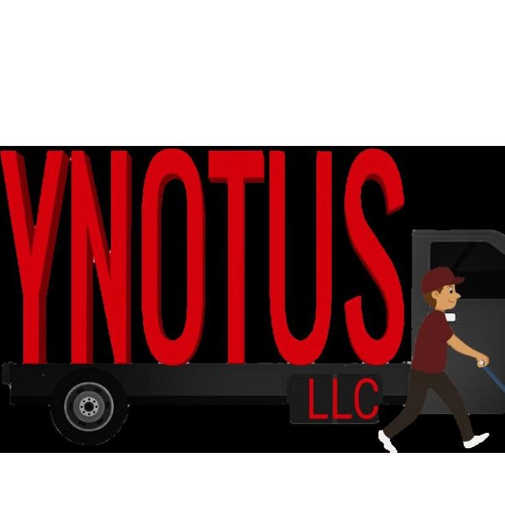 Y Not Us