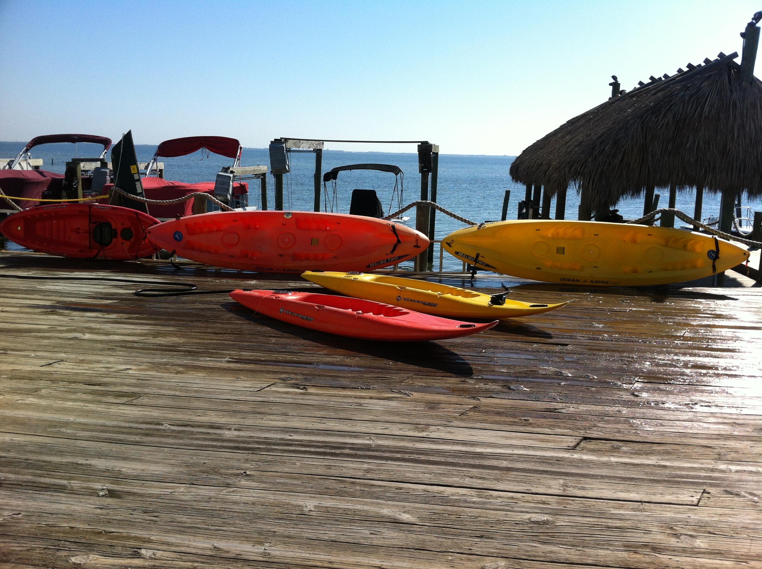 Surf and Ski Watersports in Merritt Island, FL 32952 ...