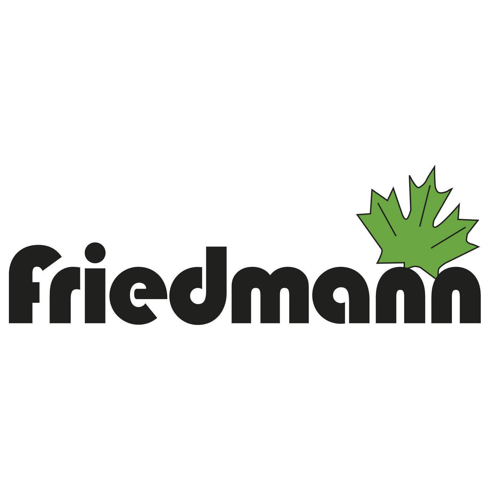 Bild zu Friedmann-Motorgeräte in Büttelborn