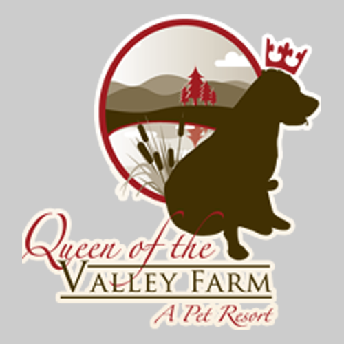 Queen Of The Valley Farm - Zionsville, PA - Pet Sitting & Exercising