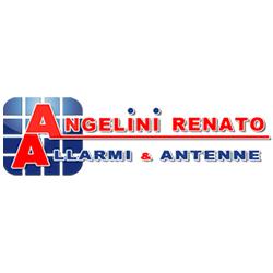 Angelini Renato S.R.L