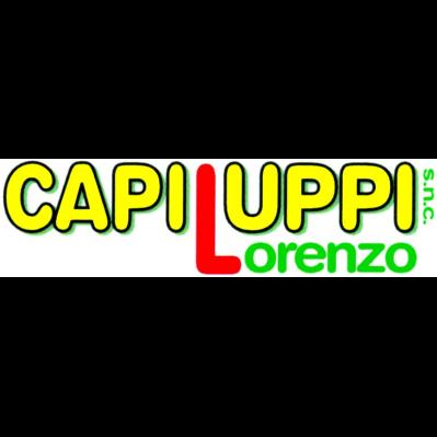 Capiluppi Lorenzo
