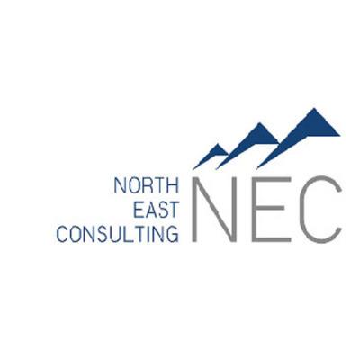 Nec North East Consulting