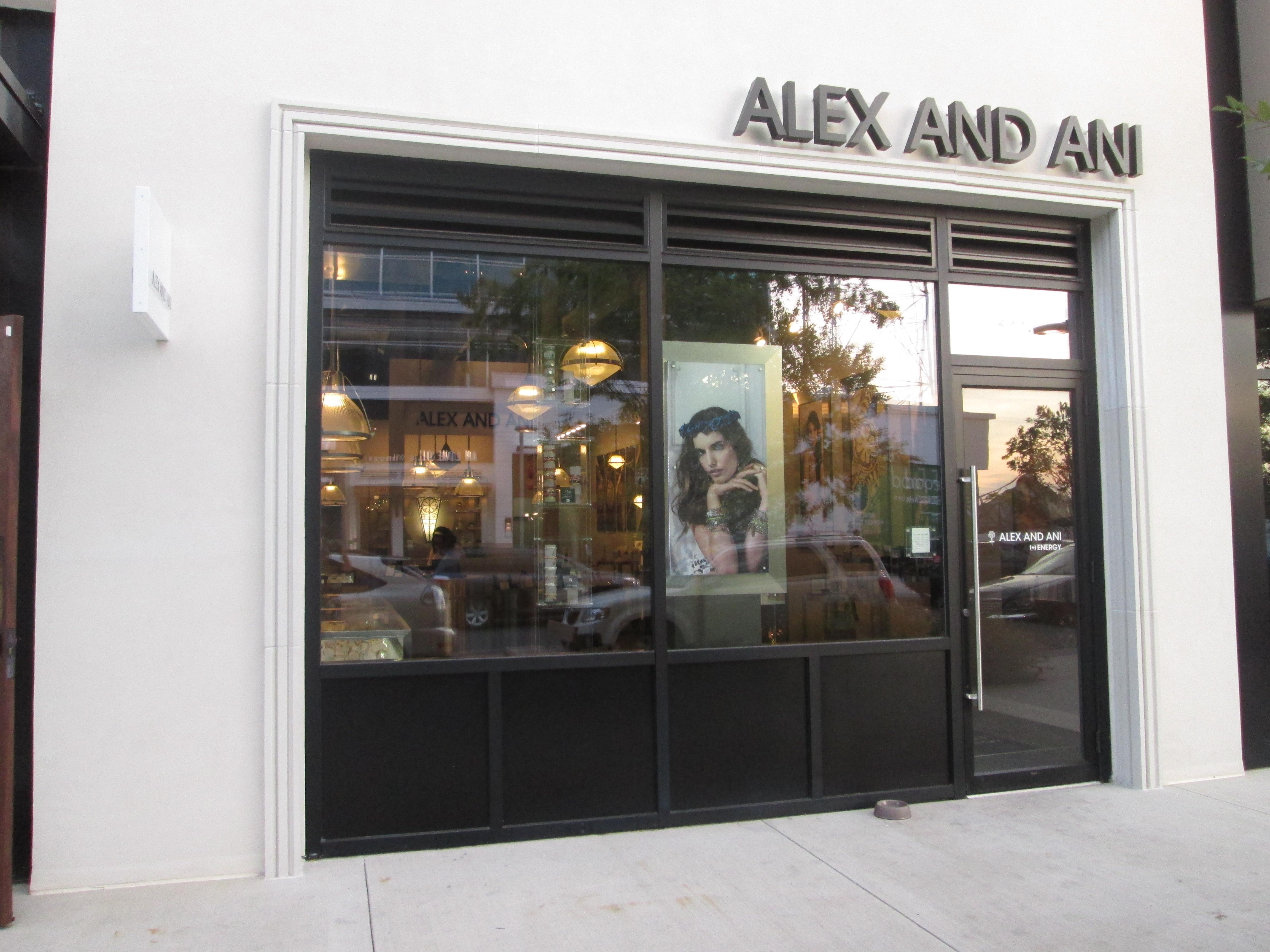 ALEX AND ANI image 0