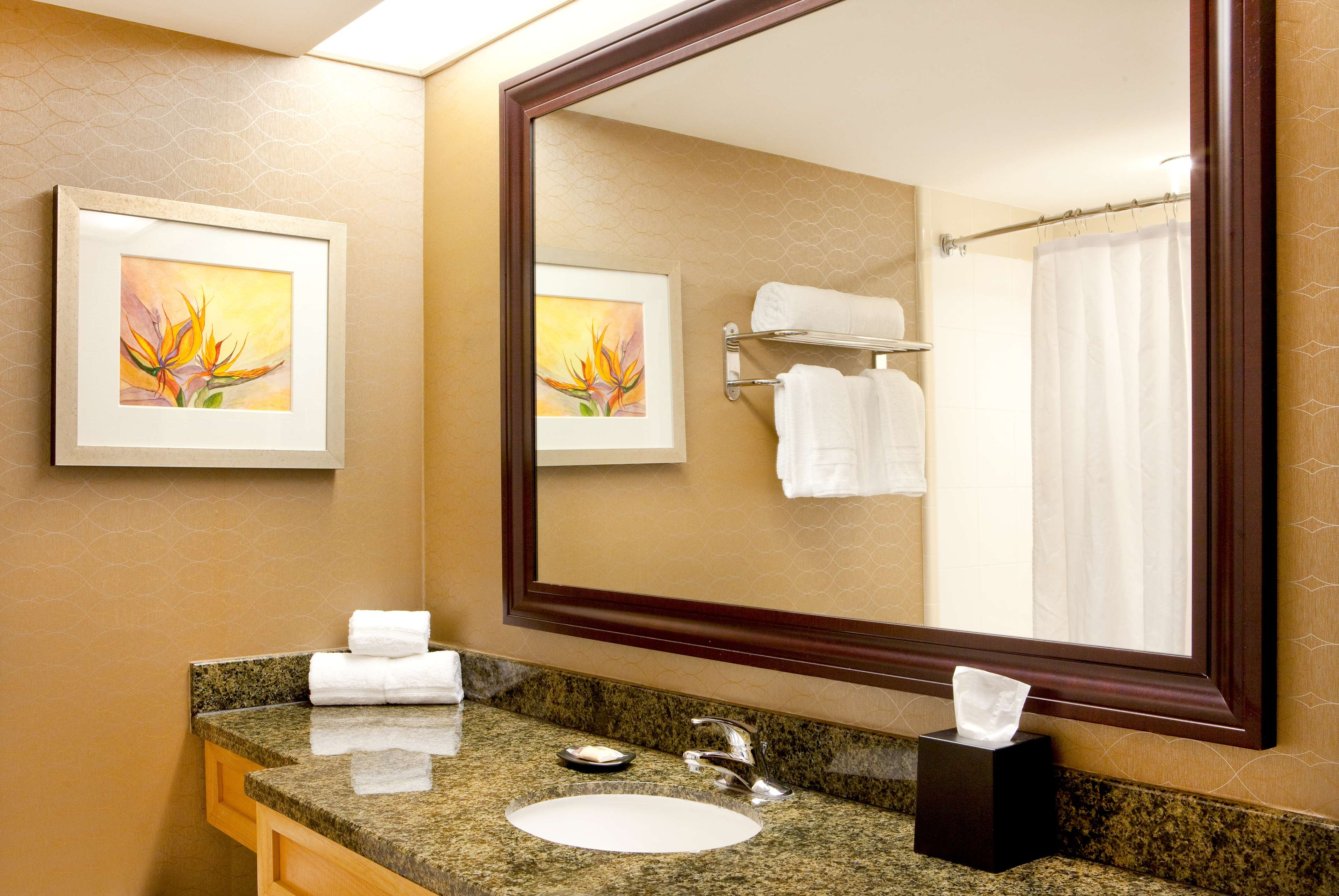 Hotels Near Sheraton Convention Center Myrtle Beach Sc