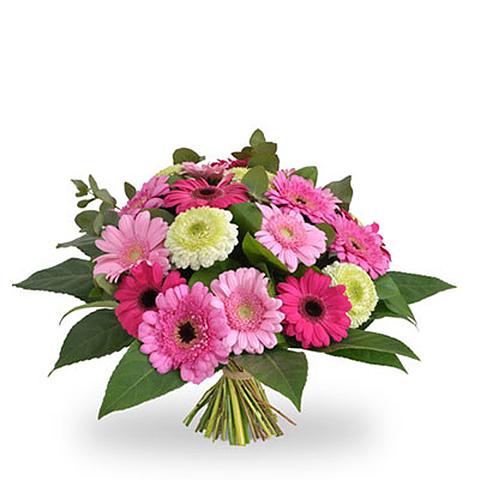 Bloemen- en Plantencentrum Bella Flora