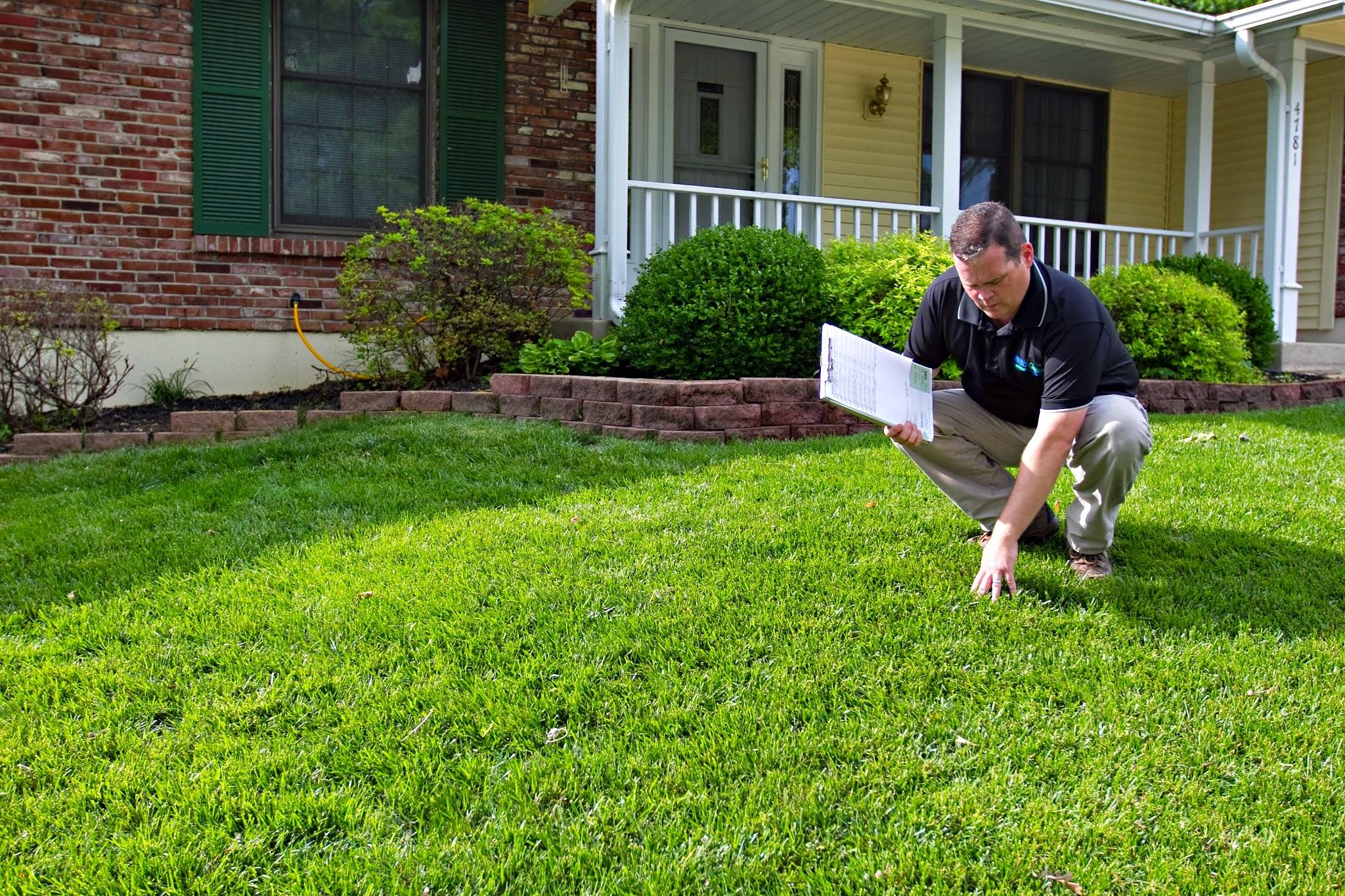 Spring green lawn care saint louis missouri mo for Local lawn mowing services