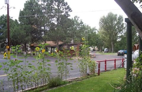 Albuquerque North / Bernalillo KOA image 4