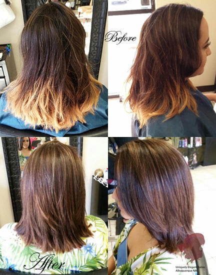 haircut coupons albuquerque uniquely salon spa albuquerque nm hair salons 5498