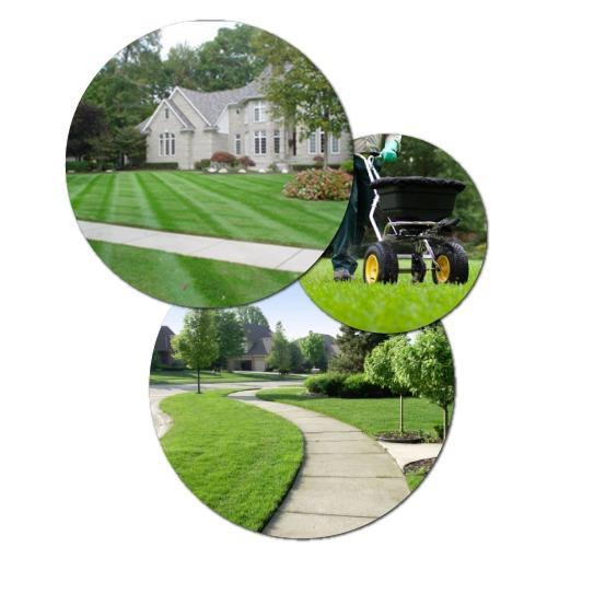 Southern Blue Lawn & Landscaping