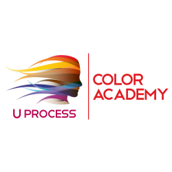 UProcess Color Academy