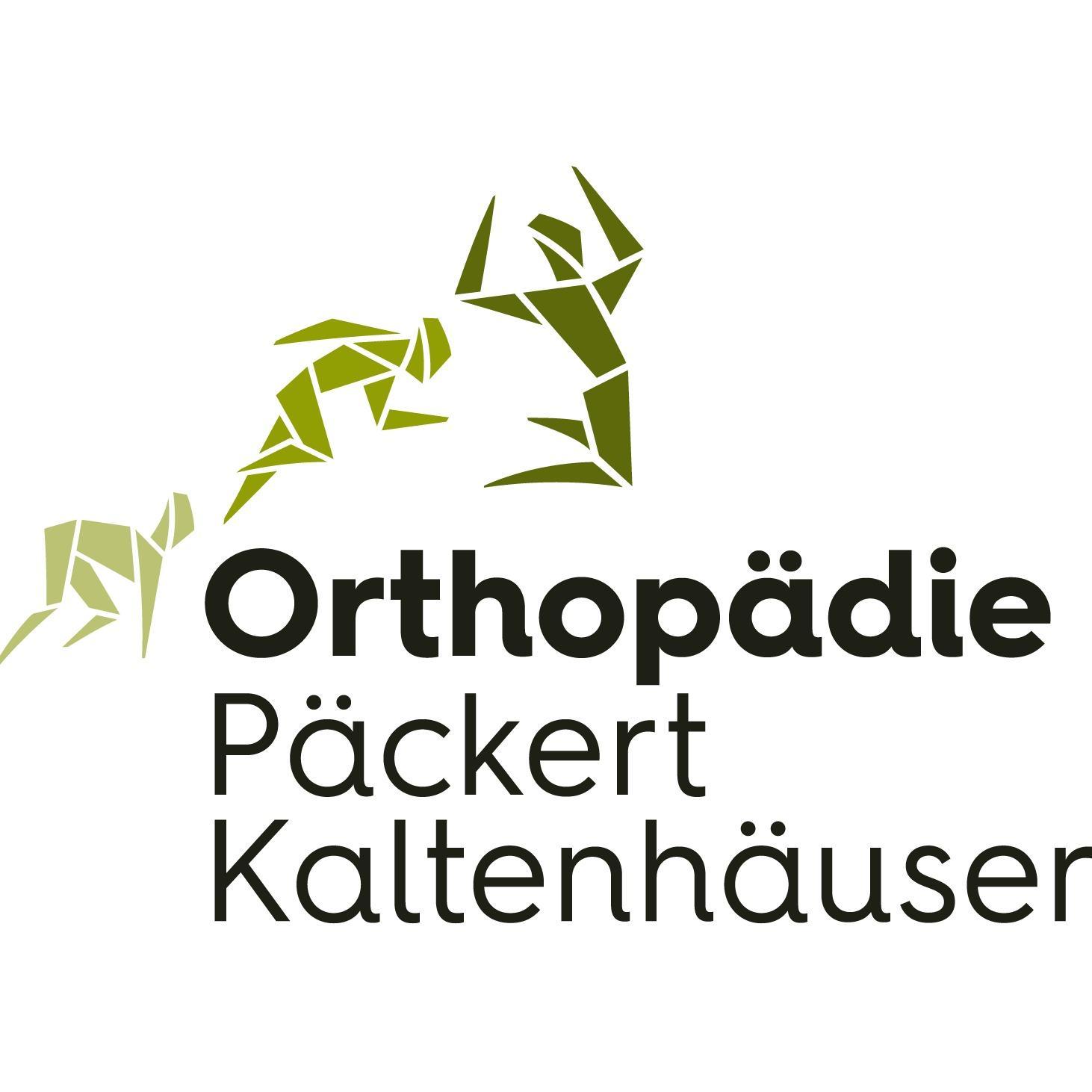 Bild zu Orthopädie Päckert und Kaltenhäuser - Fachärzte für Orthopädie & Unfallchirurgie in Großwallstadt