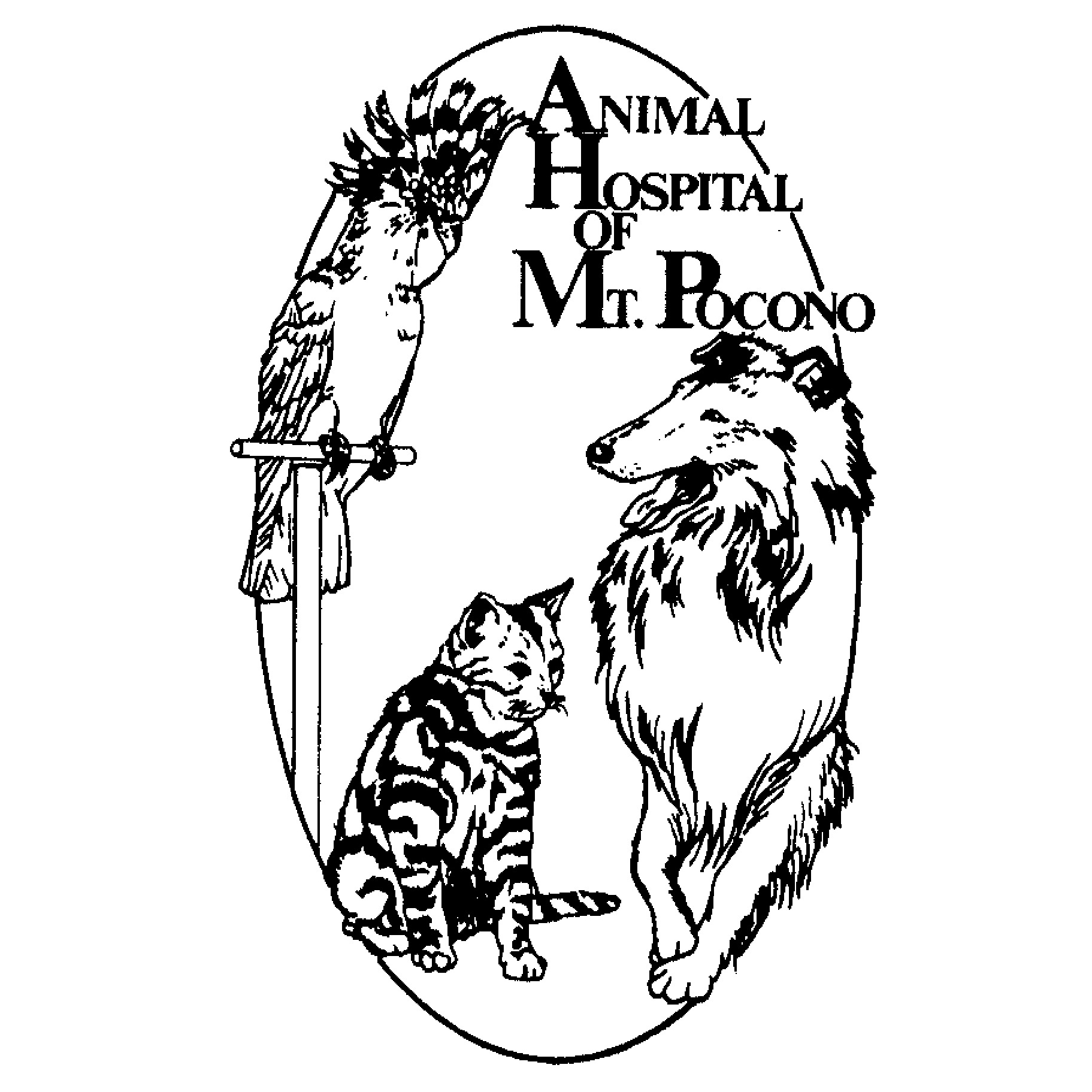 Animal Hospital of Mount Pocono