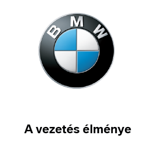 BMW Wallis Motor Pest