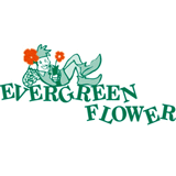Evergreen Flowers