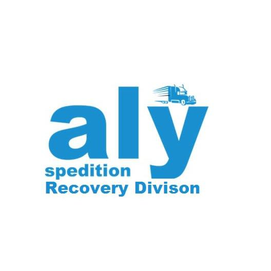 Aly Spedition Recovery Division - Motherwell, Lanarkshire ML1 3TW - 07547 914368 | ShowMeLocal.com