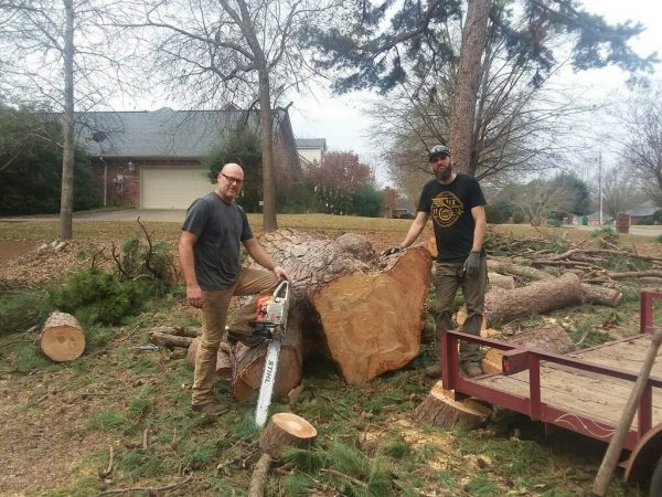 Landscaping and Tree Removal in Palestine, TX
