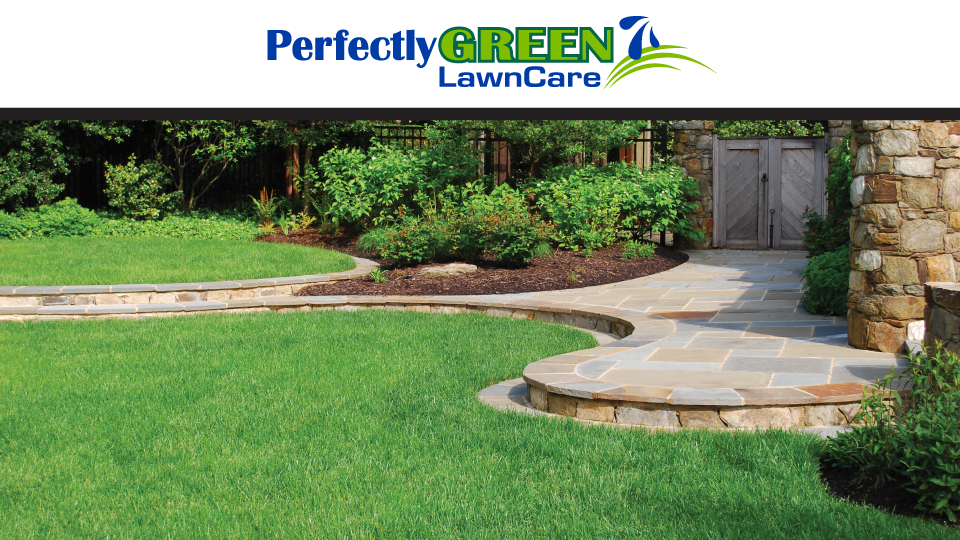 Perfectly green lawn care hoschton georgia ga for Local lawn mowing services
