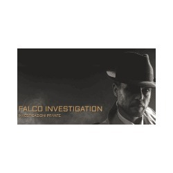 Falco Investigation