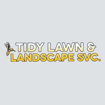 Tidy Lawn And Landscape Service