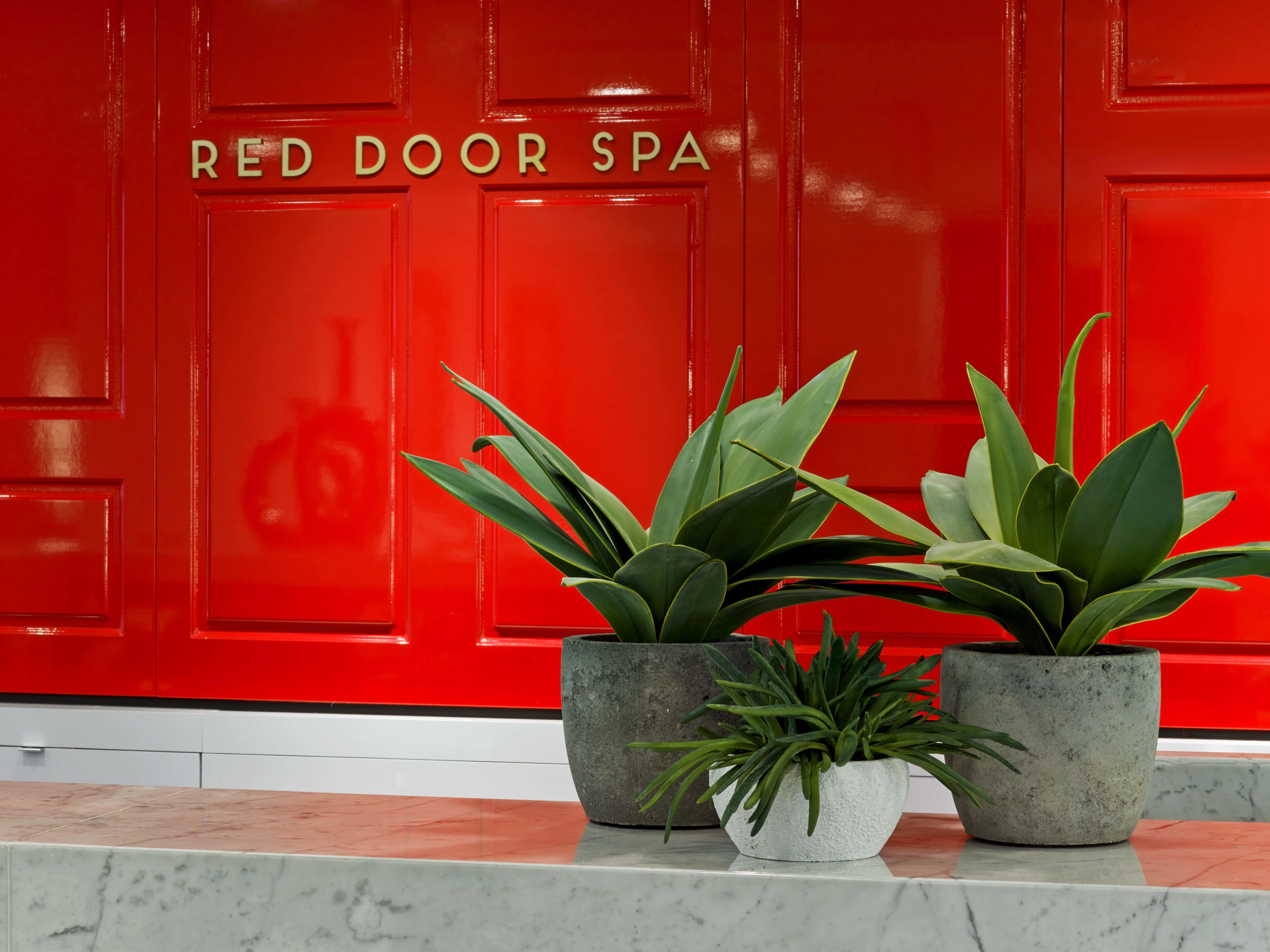 Red door coupon code